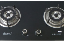 Bếp ga âm RG-204SG NEW